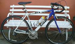 Caloi 10 2006