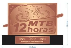 Troféu-3º-12-hs-2016