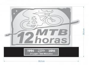 trofeu-2º-12-hs-2016