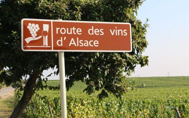Rota do Vinho da Alsácia