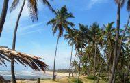 Costa dos Coqueiros 2017