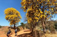 Travessia Serra Negra a Holambra 2019